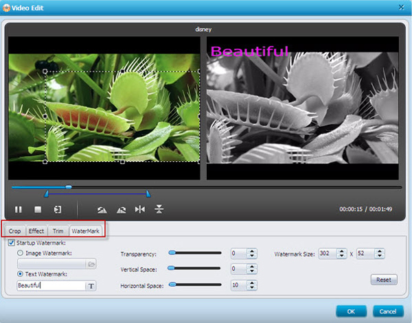 Camcorder to DVD burner, convert Camcorder to DVD - editing